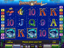 dolphins pearl deluxe im energy casino