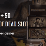 Viks Casino Book of Dead Freispiele