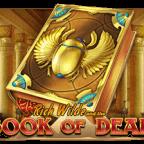 Book of Dead kostenlos mit gratis Geld und Freispiele!